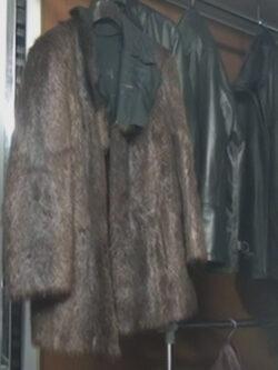 Campanie PETA – Donati hainele de blana pentru oamenii strazii!