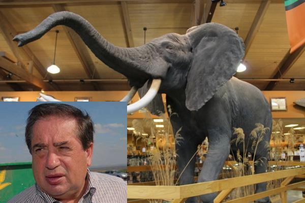 Miliardarul Ioan Niculae, la vân?toare de elefanti în Africa de Sud