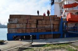 "Paduri ""disparute"" prin Portul Constanta!"