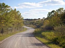 ANRP sesizeaza Parchetul privind retrocedarea a 980 de hectare de padure din Magureni-Prahova
