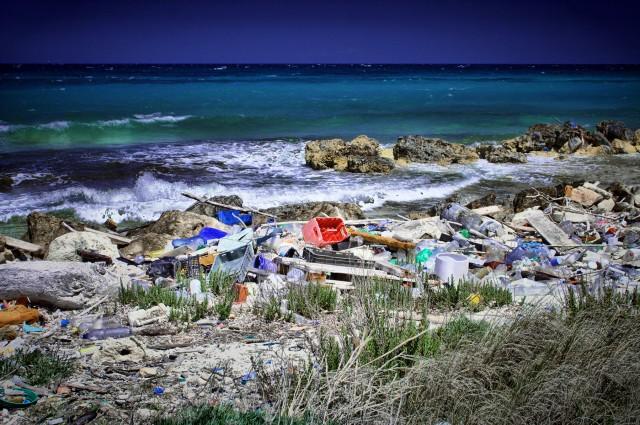 Plasticul care se degradeaz? în trei ore