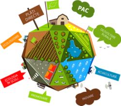 Modalitati de sprijin pentru producatorii de produse ecologice din Europa