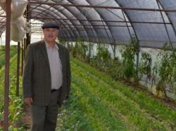 Reducerea TVA la produsele ecologice: apa de ploaie pentru fermierii bio