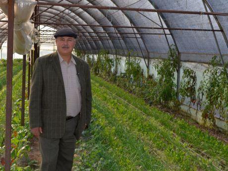 Reducerea TVA la produsele ecologice: ap? de ploaie pentru fermierii bio