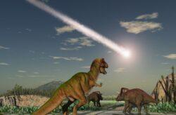 O eruptie vulcanica fara precedent ar fi cauzat o serie de schimbari climatice care au dus la disparitia dinozaurilor.