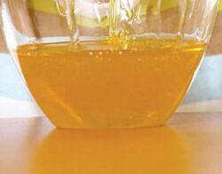 Mierea de rapita protejeaza rinichii, pancreasul si oasele
