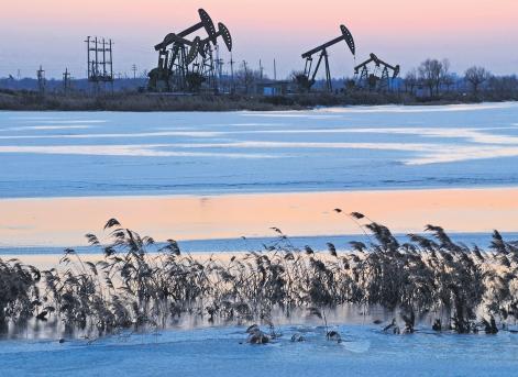 OPEC: Pretul petrolului ar putea urca la 200 de dolari/baril!
