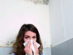 Cum ne poate imbolnavi mucegaiul din casa