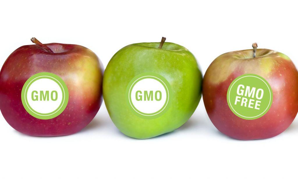 Parlamentul European votează pentru interzicerea culturilor modificate genetic