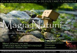 Magia Naturii – Puterea de vindecare a plantelor
