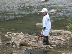 Amenintarile de pe Somesul Mic: poluarea si braconajul