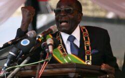 La petrecerea presedintelui din Zimbabwe se va servi carne de elefant
