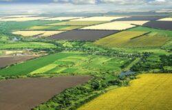 Unda verde pentru cultivarea plantelor modificate genetic