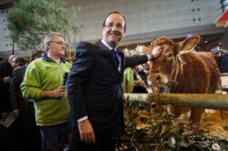 Salonul agriculturii de la Paris: vaca, simbol al poluǎrii?