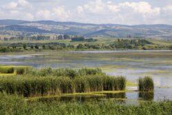Zonele Natura 2000 se vor dezvolta durabil prin finantare elvetiana