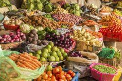 Despre agricultura ecologica