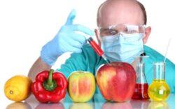 Alimentele modificate genetic, o catastrofa! Ce putem face? Dezvaluiri incendiare…