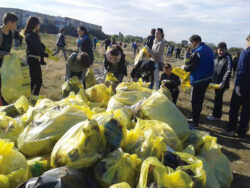 Lipsa educatiei ecologice, o bariera in calea colectarii selective
