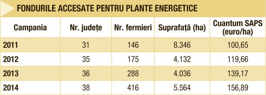 Plantele energetice se conecteaza la profituri