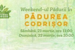 Asociatia Bistrita Civica organizeaza la data de 21 si 22 martie primele iesiri in Padurea Codrisor si o actiune de ecologizare