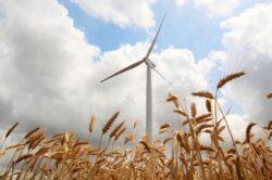 CEZ a reclamat Romania la Bruxelles privind amanarea acordarii certificatelor verzi