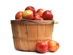 Mere si cartofi modificati genetic care nu isi schimba culoare cand sunt taiate, in curand in SUA