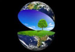 TRM anunta lansarea unei campanii de informare privind protejarea biodiversitatii
