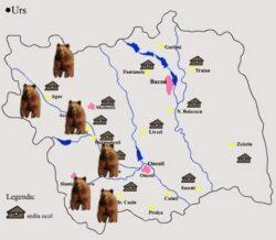 Incepe evaluarea populatiilor de animale protejate din judetul Bacau