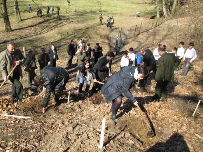 Direcţia Silvică Gorj a demarat campania de împăduriri