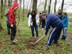 Elevii teleormaneni vor planta, in aceasta primavara, peste 66.000 de puieti forestieri
