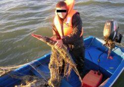 Perchezitii la braconierii din Delta Dunarii