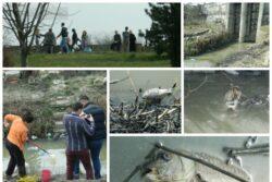 Compania de Apa din Arad a fost amendata pentru poluarea de pe Muresel