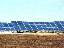 Cel mai mare proiect de energie solara a ucis peste 3500 de pasari in primul an de functionare