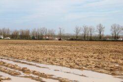 Fermierii vor invata cum sa-si produca propriul biocarburant