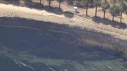 21.000 de galoane de ţiţei s-au scurs pe plajele din Santa Barbara