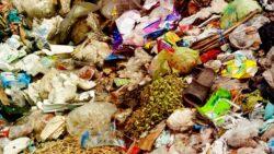 3022038-poster-1280-garbage