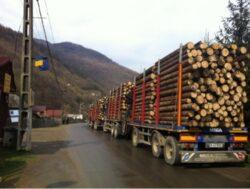 Ministerul Mediului solicita Romsilva deblocarea situatiei de pe piata lemnului