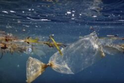 Avertisment la Davos: Pana in 2050, in oceane ar putea fi mai mult plastic decat peste