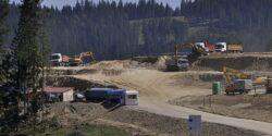 Biosilva cere CJ un plan de reconstrucţie ecologică a Vf. Mestecăniş