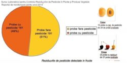 Raport: Pesticidele din hrana bebelușilor: morcovi, caise, pătrunjel cu ciprodinil, clorpirifos, carbendazim