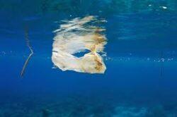 3% din deseurile din oceane sunt alcatuite din pungi de plastic alimentare.