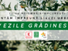 Plantam impreuna livezi urbane: LIVEZILE GRÄ'DINESCU